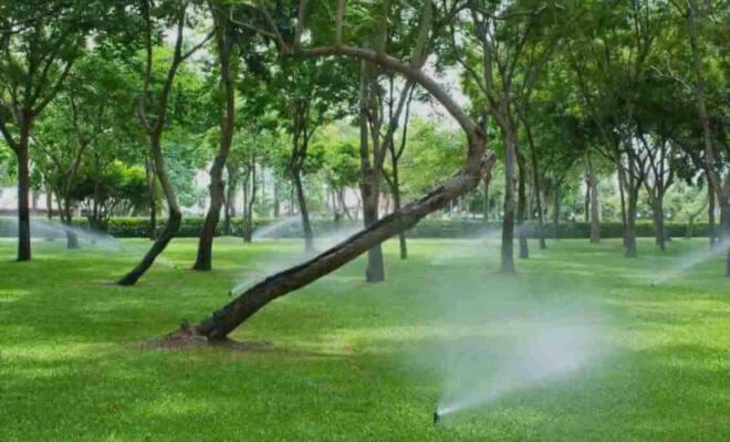 irrigazione pompa giardino