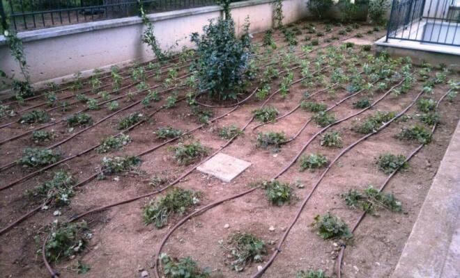 impianto irrigazione terra